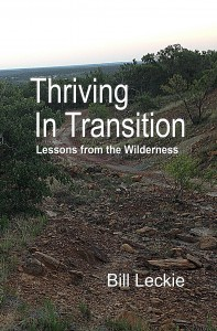 Thriving In Transition front cover1