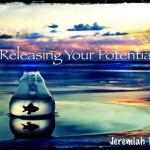 Releasing Your Potential WordPress pic